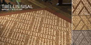 Trellis Sisal rug for Stair runner carpet